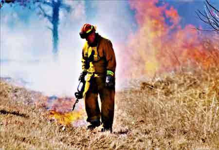How Substantive Policy Change Reduces Wildfire Risk